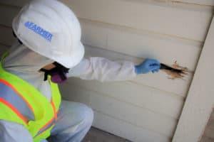 Farmer EG prefessional checking on a damaged wall for asbestos dangers