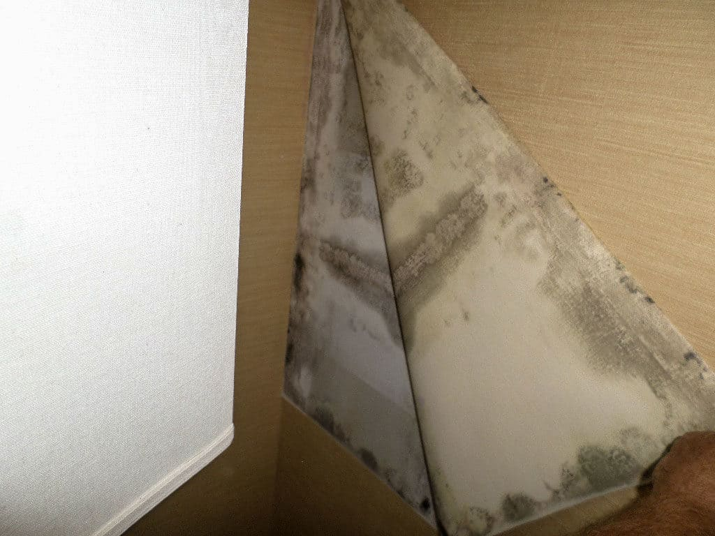 mold that needs remedy hiding in the wall
