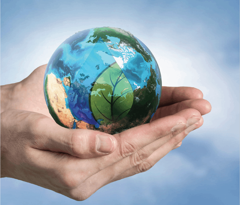 hands holding environmental globe